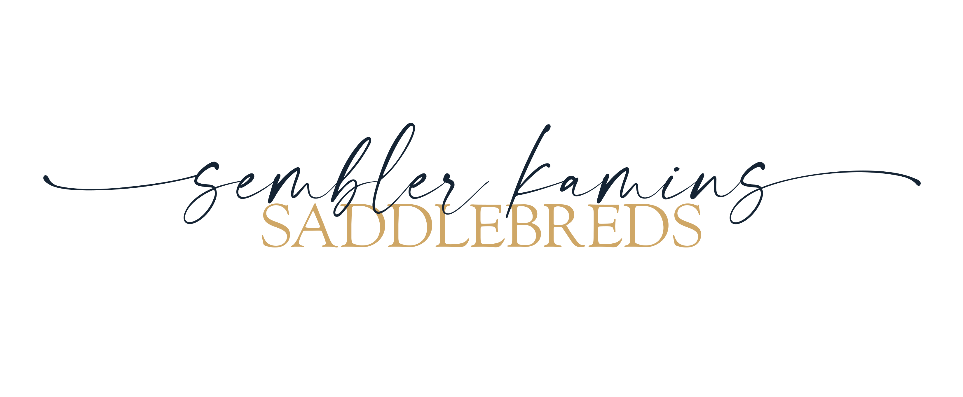Sembler-Kamins Saddlebreds